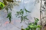 부산두구동 공덕산 - 산불발생, 주불진화 완료